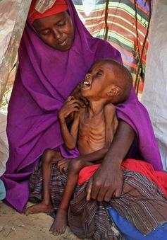 Hàng nghìn người phải sơ tán do hạn hán nghiêm trọng tại Somalia