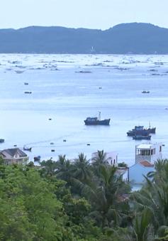 Phú Yên chưa ban hành quy định quản lý lồng bè nuôi trồng thủy sản