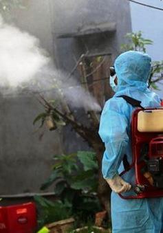 Hà Nội: Dịch bệnh bùng phát là do công tác dự báo dịch chưa thực hiện tốt