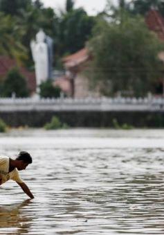 Sri Lanka gấp rút sơ tán người dân khỏi khu vực bão lũ