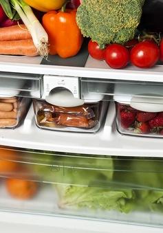 Thói quen sai lầm biến tủ lạnh thành… ổ vi khuẩn