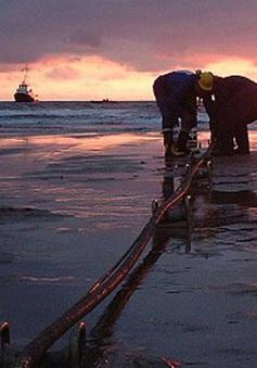 Giữa tháng 7 mới khắc phục được sự cố tuyến cáp biển APG