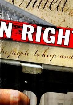 Mỹ thông qua dự luật cấm nghi phạm bạo hành gia đình sở hữu súng