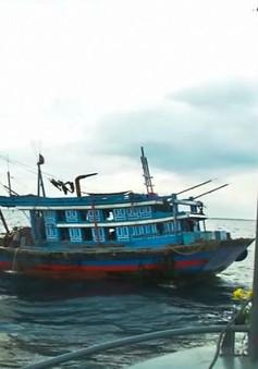 """Quảng Trị đẩy mạnh ngăn chặn nạn khai thác thủy hải sản """"tận diệt"""""""
