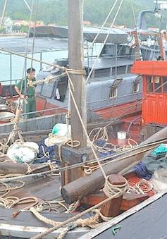 Cứu 7 ngư dân và tàu cá gặp nạn trên biển