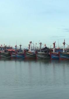 Bình Thuận xin bổ sung 50 tàu cá theo Nghị định 67