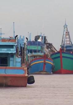 Bến Tre duy trì lệnh cấm tàu thuyền ra khơi