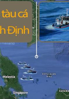 Bình Định đề nghị Malaysia hỗ trợ cho tàu cá trú bão