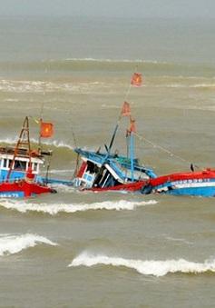 Tàu cá Bình Định bị tông chìm, 1 ngư dân mất tích trên biển