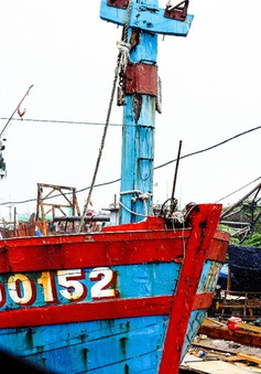 Trưng bày tàu cá Đà Nẵng bị đâm chìm ở vùng biển Hoàng Sa