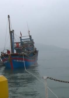 Cứu tàu cá cùng 9 thuyền viên gặp nạn trên biển