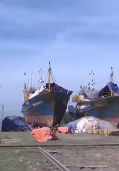 Bình Định sẽ hỗ trợ ngư dân kiện ra tòa nếu công ty đóng tàu không hỗ trợ