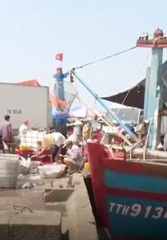 Thừa Thiên - Huế: Sản lượng khai thác hải sản trên biển tăng 22%
