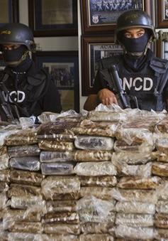 Tây Ban Nha và Ecuador tịch thu hơn 5 tấn cocaine