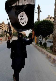 Mỹ bổ sung thêm 7 tay súng IS vào danh sách đen