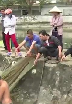 """Nhiều hộ dân vẫn """"lén lút"""" bán cá sau vụ vỡ đập chứa bùn thải ở Nghệ An"""