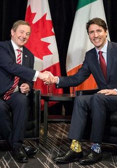 Thủ tướng Canada Trudeau gây sốt trên mạng vì đi tất trái đôi