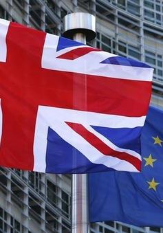 Nhiều doanh nghiệp Anh phải khai báo thuế hải quan lần đầu vì Brexit