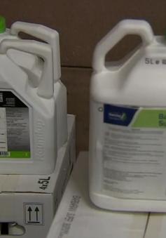 EU gia hạn sử dụng chất Glyphosate: Các tổ chức bảo vệ môi trường phản đối