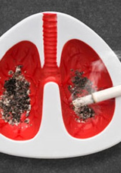 Thuốc lá – kẻ phá hủy lá phổi