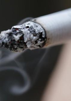 Khói thuốc lá có gần 70 chất gây ung thư