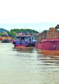 Mở tuyến vận tải thủy nội địa Việt Trì - Hải Phòng
