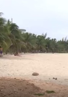 Đà Nẵng đồng ý cho xây kè chống sạt lở tại khu vực biển Tiên Sa