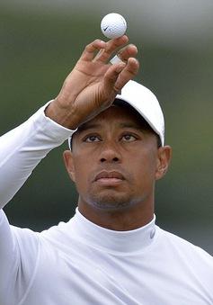 Tụt xuống vị trí 899 thế giới, Tiger Woods có đáng bị chỉ trích?