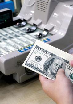 Ngân hàng Nhà nước sẵn sàng can thiệp để ổn định thị trường ngoại tệ
