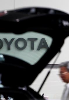 Lợi nhuận ròng của Toyota giảm mạnh nhất trong 5 năm