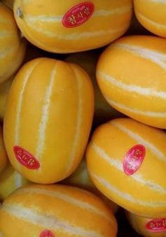 Ma trận tem dán nhãn nhập khẩu trái cây, người tiêu dùng loạn!