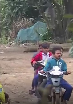 Quảng Trị: Tùy tiện cho trẻ điều khiển xe máy tới trường