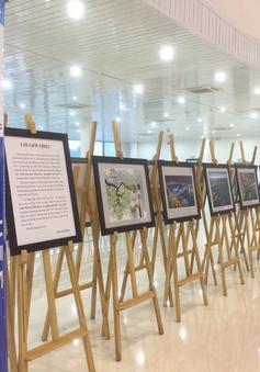 Triển lãm ảnh tại APEC 2017 góp phần quảng bá du lịch Việt Nam