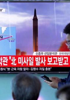 """NATO kêu gọi """"phản ứng toàn cầu"""" đối với Bình Nhưỡng"""