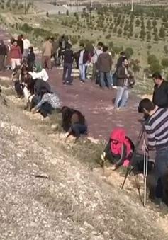 Người dân Iraq trồng cây để cải thiện chất lượng không khí