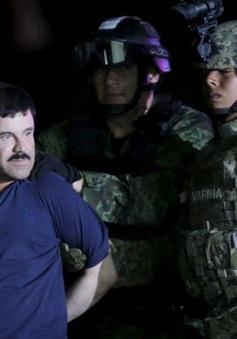 Mexico dẫn độ trùm ma túy El Chapo sang Mỹ