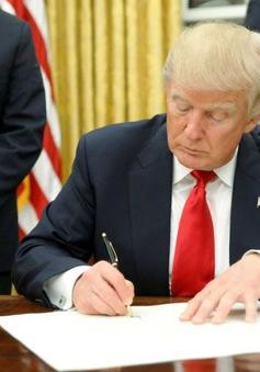 Hawaii sẽ là bang đầu tiên khởi kiện Chính phủ Mỹ về sắc lệnh nhập cư mới