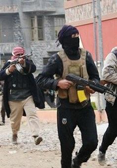 LHQ thông qua nghị quyết trừng phạt các thực thể liên quan tới IS