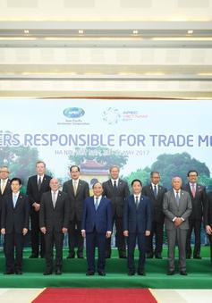 Thủ tướng tiếp các trưởng đoàn dự Hội nghị Bộ trưởng Thương mại APEC