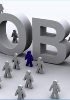 1,12 triệu người thất nghiệp, thu nhập bình quân giảm trong quý II/2017