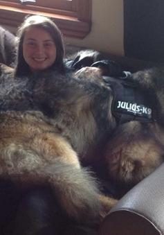 Bất ngờ với chú chó khổng lồ ở vòng loại Britain's Got Talent