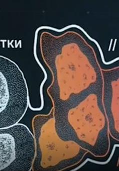Đột phá mới từ chế phẩm sinh học có khả năng chữa ung thư