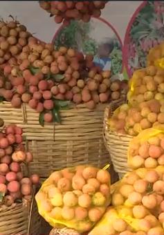 Chất lượng và an toàn thực phẩm - Bài học thành công từ lô vải đầu tiên xuất đi Thái Lan