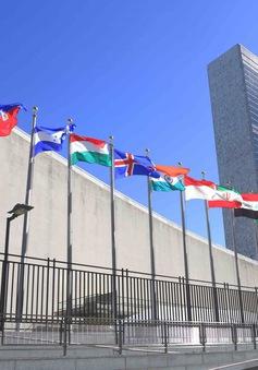 Việt Nam - Thành viên có trách nhiệm của Liên Hợp Quốc