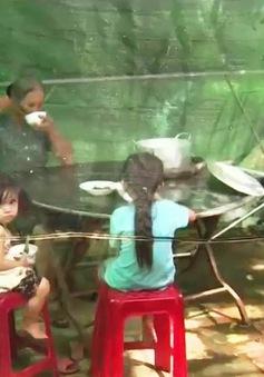 Vĩnh Long: Người dân bức xúc vì trại gà gây ô nhiễm
