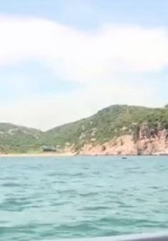 Đến Ninh Thuận ngắm san hô từ tàu đáy kính