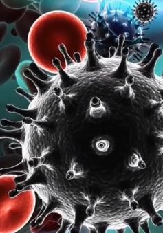 Hiểu đúng về con đường lây nhiễm HIV