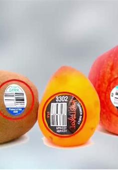 Tem dán nhãn trái cây giả tràn lan, người tiêu dùng bị lừa công khai?
