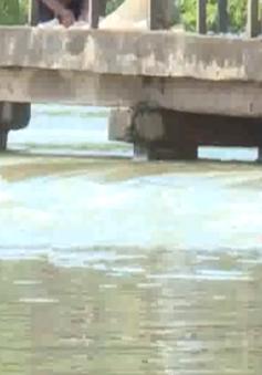 Nguy cơ vỡ đê hồ Quan Sơn, Hà Nội