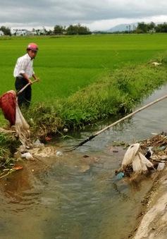 Đồng Tháp: Người dân vứt xác gia cầm bừa bãi ra kênh rạch